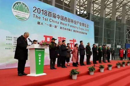 2018首届中国西部林业产业博览会圆满开幕凭祥